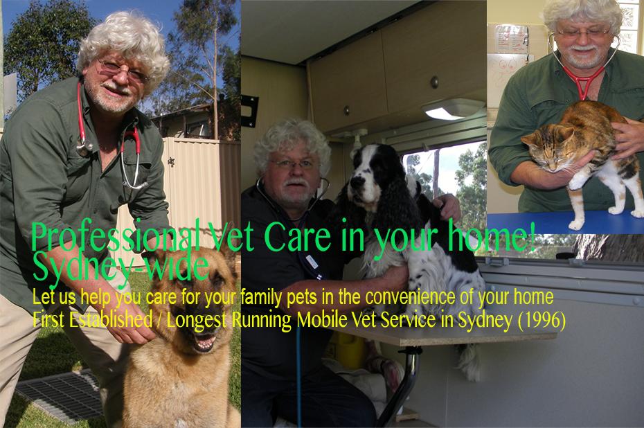 Welcome - Caring in-home Pet Euthanasia -CaringVet com au